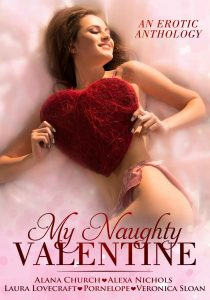 my_naughty_valentine_cover